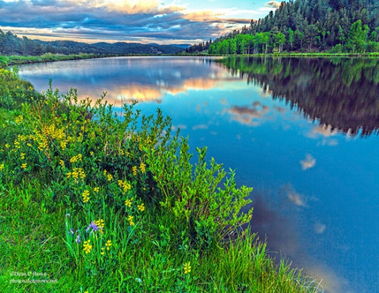 Bailey, benches, Colorado, Deer Creek Valley, Landscape, pond, reflections, sunset, wildflowers