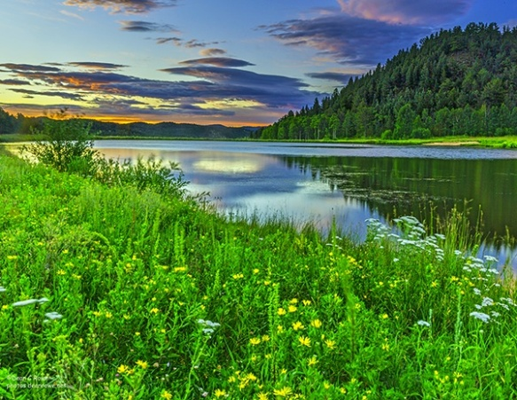 Bailey, benches, Colorado, Deer Creek Valley, Landscape, pond, reflections, sunrise, wildflowers