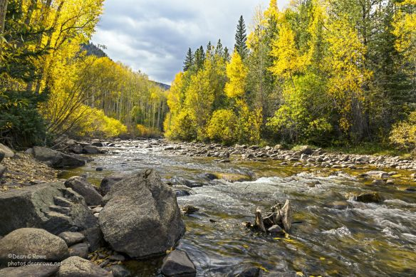 aspen, Chaffee County, Chalk Creek, Collegiate Peaks, Colorado, fall