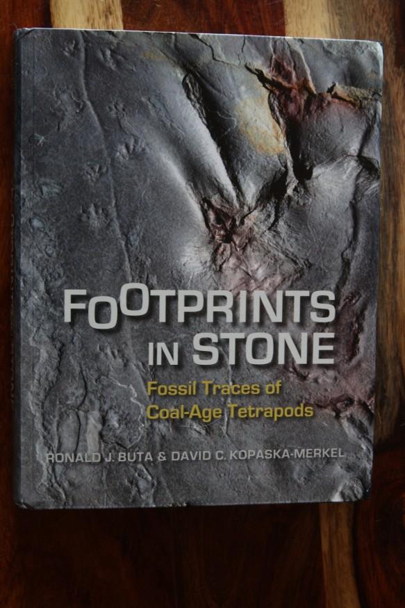 FootprintsInStone